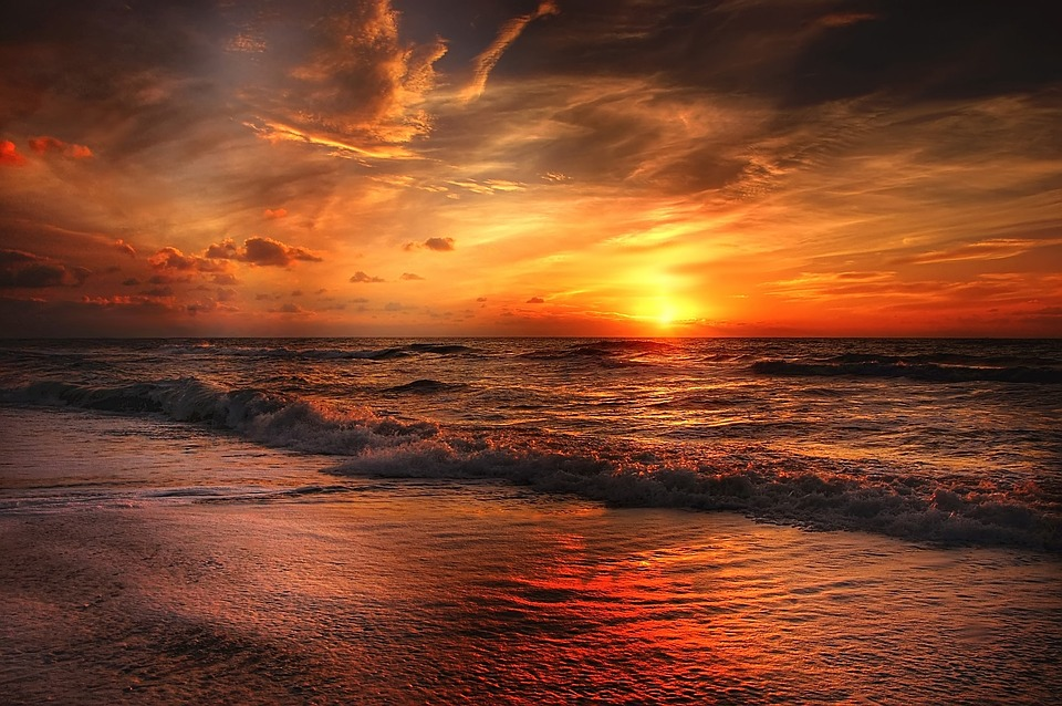 תל גדור רצועת חוף פראית ליד חוף גבעת אולגה